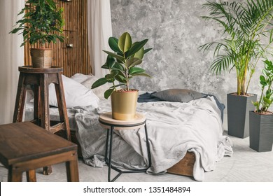 Gray coat and pillows on bed in house or hotel. Scandinavian styled with green plants bedroom interior in apartment.  Relax calm eco friendly leisure concept. Natural wooden bed and chairs.