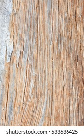 Gray driftwood closeup background