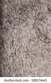 Gray fur background