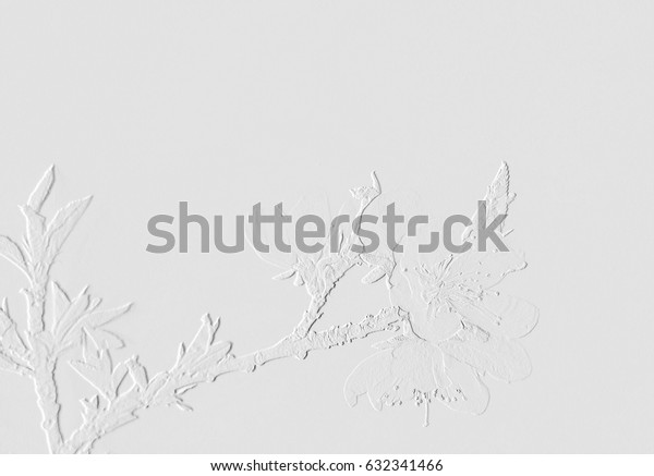 Gray or Grey White Grunge Cement Background Texture or Silver color background texture. Idea for Wall or Floor background texture in house or Wallpaper.