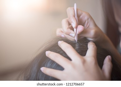 gray hair and tweezers.Woman's hand with tweezers plucking gray hair roots.Closeup hand holding tweezers, removing white hair from head.