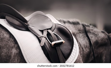 The gray horse is wearing a black leather saddle, a white saddlecloth, a metal stirrup and a bridle. Equestrian sports and ammunition. Horse riding.