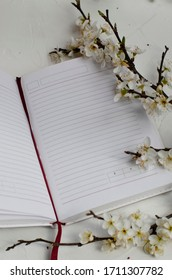 gray notebook on a white background with flowering tree branches