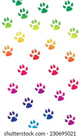 Gray paw prints in a random pattern in bright rainbow colors