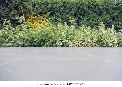 Gray porcelain laid out before the flowerbed. There is plenty of space for any text.