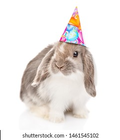 Gray rabbit  in birthday hat looking at camera. isolated on white background