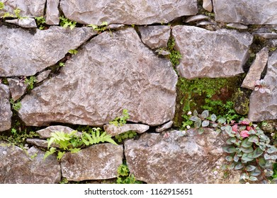 Gray rock wall with pink flowers and leaves.