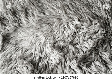 Gray sheep wool rug - background or texture.