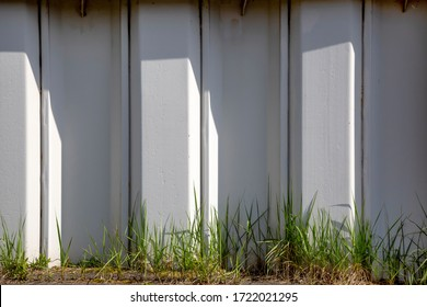 Gray sheet pile wall overgrown with grass in the harbor area