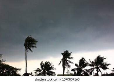 the gray sky before storm,rain