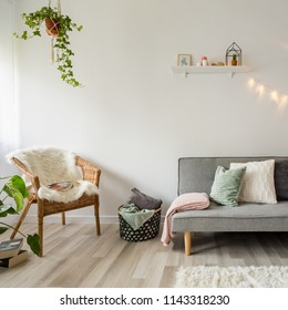 Gray sofa, coffee table and wicker chair in scandinavian style living room