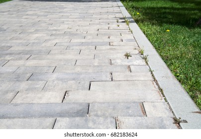 Gray stone tiled sidewalk with grass. background, nature.