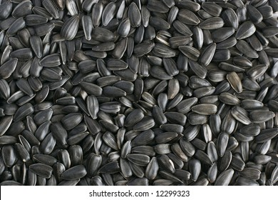 Gray sunflower seeds laying on table texture