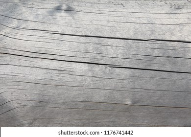 gray weathered old wood background