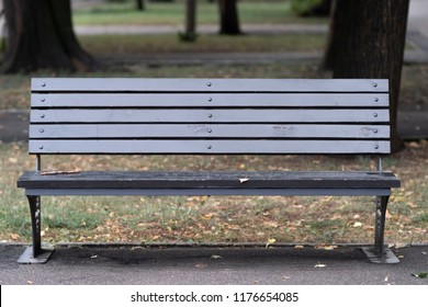 Gray wooden bench in the park, front view.