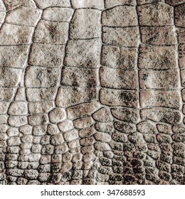 gray-brown natural snake skin pattern. Useful  as background