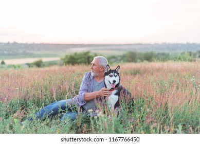 gray-haired bearded man with dog in the field at sunset
