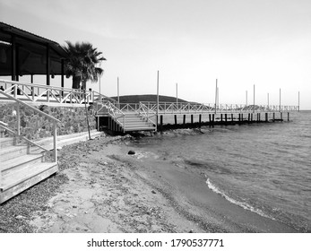 A grayscale shot of the seashore