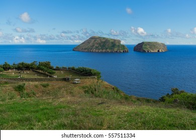 Grazing cows near Cabras Islet, Terceira, Azores, Portugal