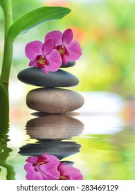 Grean orchid  leaves over zen stones pyramid reflecting in water surface