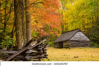 Grear Smoky Mountains National Park, Tennessee - an historic log barn in a hardwood forest with brilliant autumn fall colors