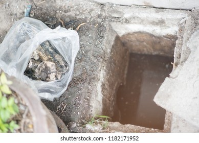 Grease and fat in drains is a nasty problem trouble for your drainage system