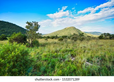 Great African savanna with hills and grassland