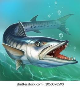 great barracuda on ocean