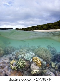 Great Barrier Reef in Whitsundays
