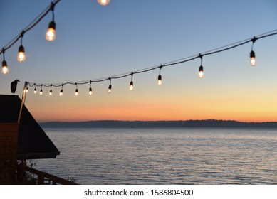 Great blue heron perched on shingled roof looking out to sea with hanging deck lights at sunset.