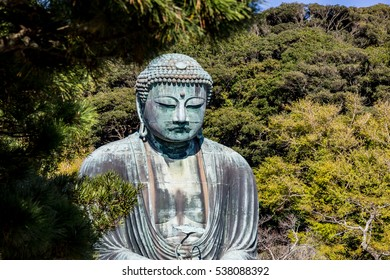 The Great Buddha Daibutsu  Kamakura, Japan.