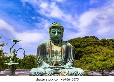 The Great Buddha in Kamakura Japan.There are pigeon to Buddha's head. Located in Kamakura, Kanagawa Prefecture Japan.