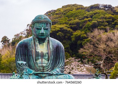 The Great Buddha. Located in Kamakura, Kanagawa Prefecture Japan.