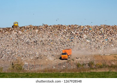 great cars and a tractor on the background of the landfill with a mountain of garbage