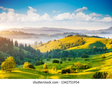 Great countryside landscape in morning light. Location place Carpathian mountains, Ukraine, Europe. An attractive summer scene on a sunny day. Fresh seasonal background. Discover the beauty of earth.