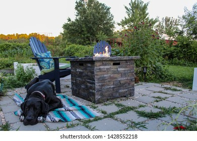 Great Dane relaxing on patio with Firepit and Andirondack Chairs