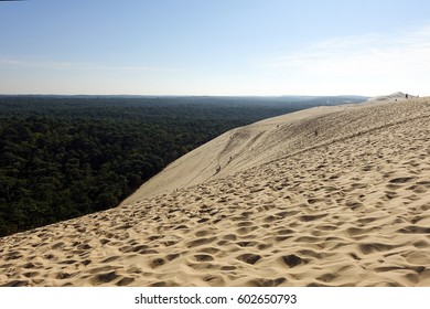 Great Dune of Pyla, the tallest sand dune in Europe, Arcachon bay, France