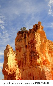 A great golden great mountain with a tree on top against a clear blue sky, a stunning wonder of the Bryce Canyon National Park in Utah, USA.