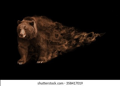 great image of a grizzly bear walking toward you, wildlife animal art, animal kingdom, grizzly bear yellow stone park and north america, canadian brown bear, zoo