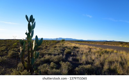 Great Karoo view road with scenery, in the Great Karoo of South Africa