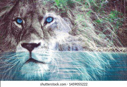 Great king lion's head double exposed with a beautiful scenery from a waterfall. The lion has blue eyes and a proud face. Power, strong, success concept. King lion in jungle. Photo manipulation.