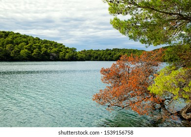 Great Lake (Veliko jezero) in Mljet National Park on Mljet island, Croatia.