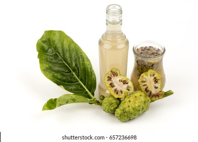 Great morinda, Tahitian noni, Indian mulberry, Beach mulberry , Noni , Meng kudu , Ach ,Fruits and extracts by noni boiled fruits have medicines property