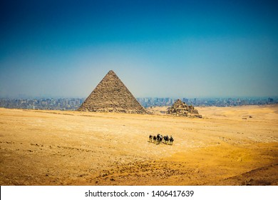 THE GREAT PYRAMIDS IN EGYPT - Egyptian camel ride group walks through the desert by the Great Pyramid of Giza, and Giza Pyramid Complex. Camel riding tourist adventure. Giza, Egypt, just outside Cairo