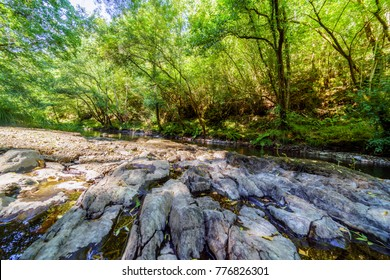 "Great rock bank in a mountain stream called ""Chelo"" with many rocks on its banks in the middle of a very green forest in Galicia (Spain). Without people"