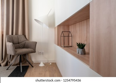 Great room in a modern style with white walls and a parquet with a carpet on the floor. There is a brown armchair, light floor lamp, lockers with wooden shelf with green plants and decorative figure.