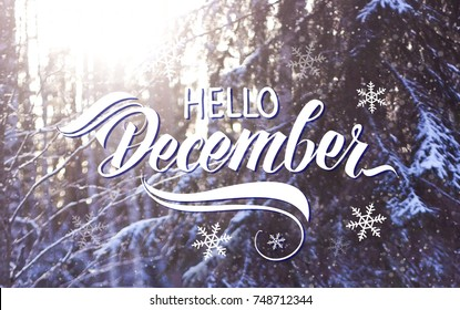 "Great season texture with winter mood. Nature december background with hand lettering ""Hello December""."
