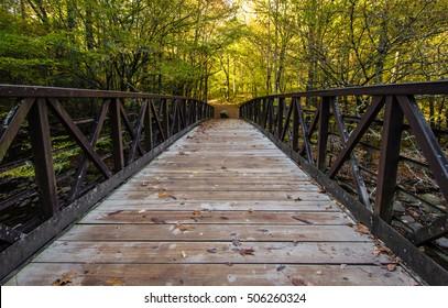 Great Smoky Mountain Hiking Trail. Footbridge along a trail in the Great Smoky Mountains with autumn foliage as the background. Gatlinburg, Tennessee.