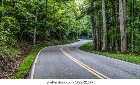Great Smoky Mountains Forest Road With Twists And Turns.