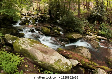 Great Smoky Mountains Little River Tributary - Rushing Water - Tennessee